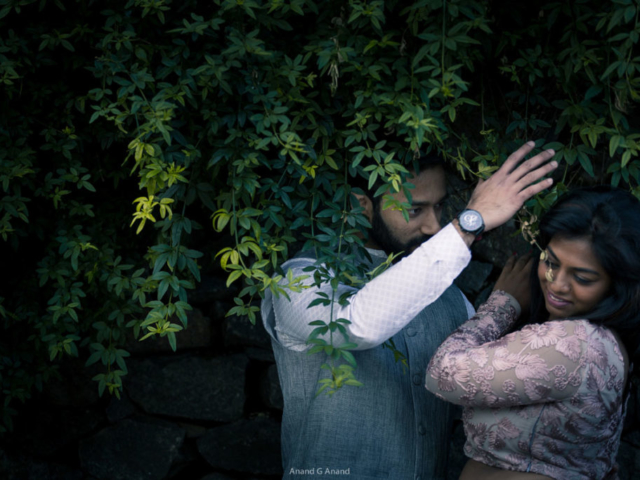 A lovely pre-wedding photoshoot of a romantic couple at green tree background